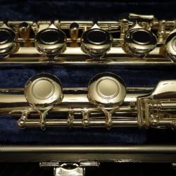SeaWind Flute MD-CFSF